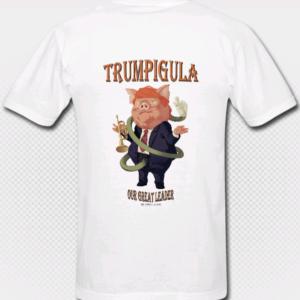 T-shirt sample back